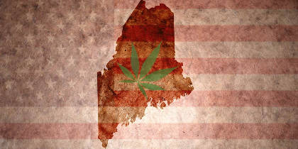 Medical Cannabis Caretakers Are Thriving In Maine