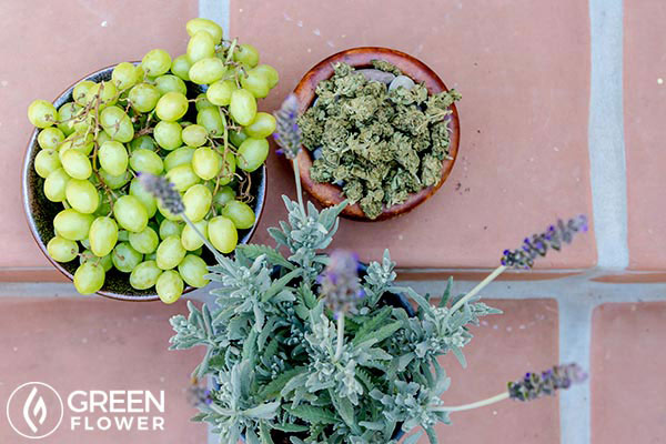 grapes, cannabis, and Lavender