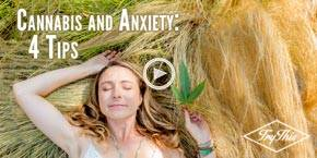 How to Self-Treat Anxiety with Cannabis