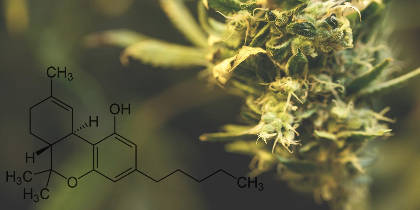 8 Amazing Benefits of THC