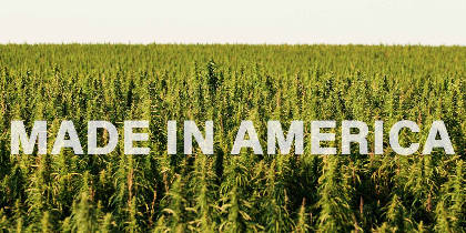 New York's Hemp Industry is Back After 80 Years of Prohibition