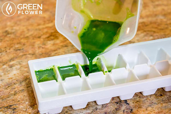 making cannabis juice ice cubes
