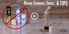 Odor Control: 6 Ways To Hide Your Cannabis Smoke