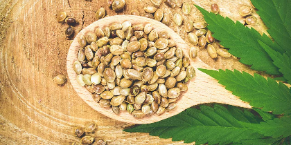 The Benefits of Juicing Cannabis vs. Eating Hemp Seeds