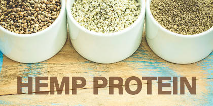15 Mind-Blowing Benefits of Hemp Protein