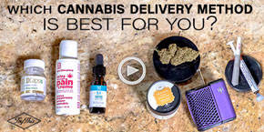 How to choose your ideal cannabis delivery method