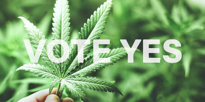 13 Reasons to Vote Yes for Cannabis Legalization