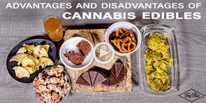 The Pluses and Minuses of Cannabis Edibles