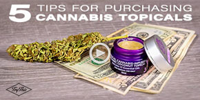 5 Essential Tips for Purchasing the Right Cannabis Topical