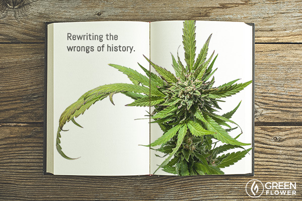 Cannabis Book