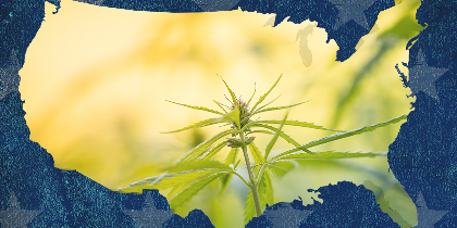 Which State Will Legalize Cannabis Next?