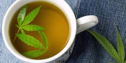 7 Reasons to Start Drinking CannabisTea