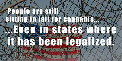Cannabis Will Never Truly Be Legal Until All Cannabis Prisoners Are Free