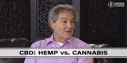 CBD Oil: Hemp Versus Cannabis