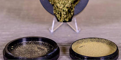 6 Things You Never Knew About Kief