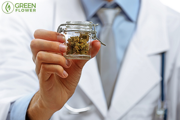 Physician holding medical cannabis