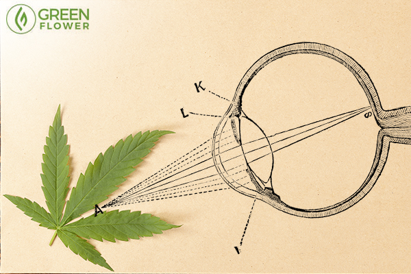 How Cannabis Affects the Eyes