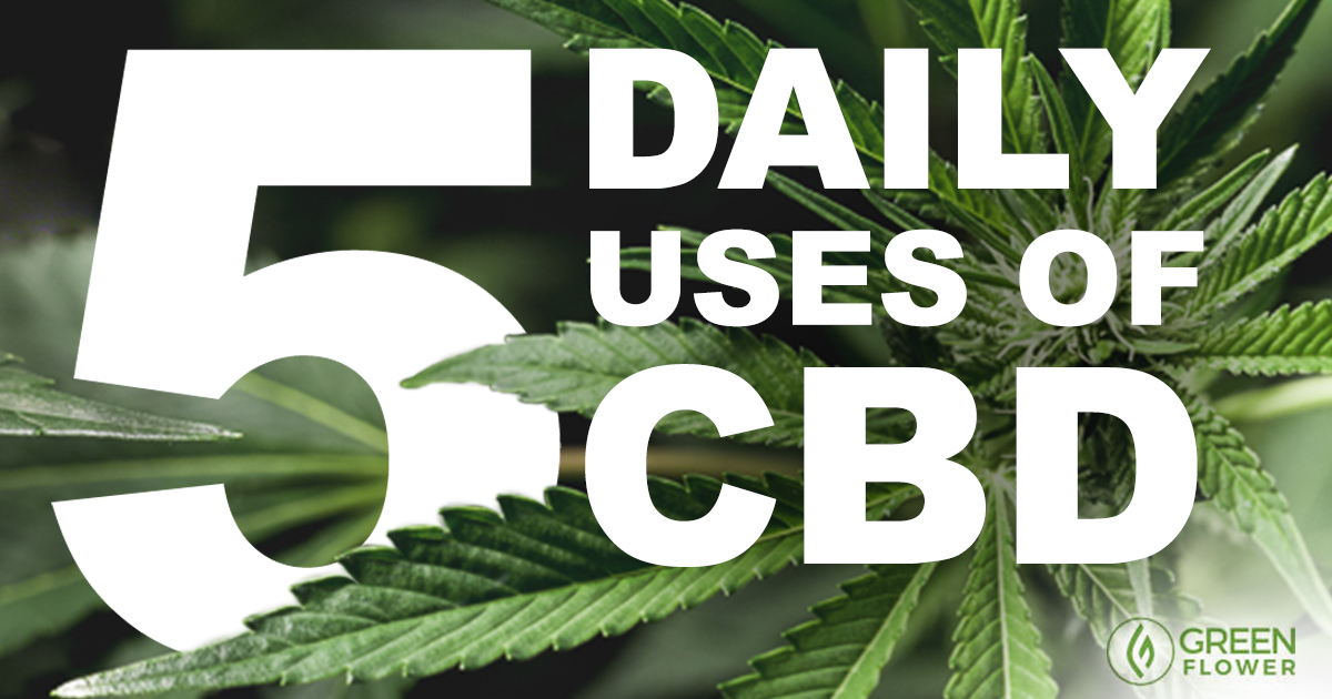 5 Ways to Use CBD Oil Every Day That Might Surprise You