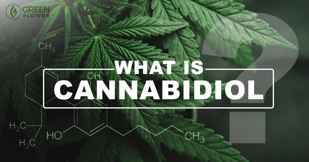 What is Cannabidiol? A Complete Guide to CBD