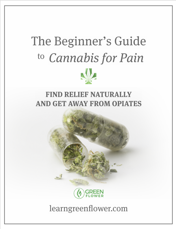 The Beginner's Guide to Cannabis for Pain