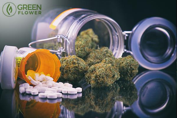 Cannabis versus opioids
