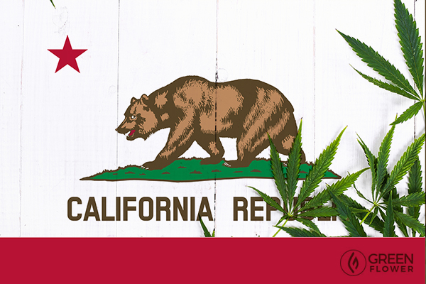 California state flag with cannabis leaves