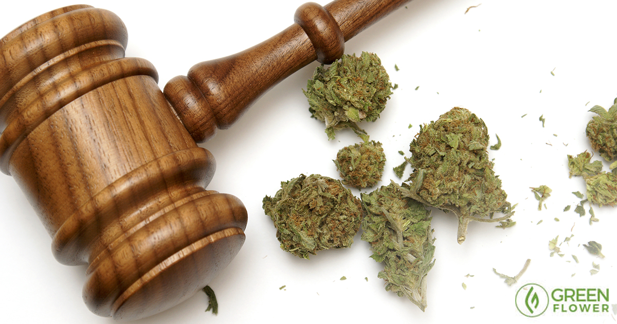 Why Is Cannabis Illegal? The Story of Cannabis Prohibition Will Shock You