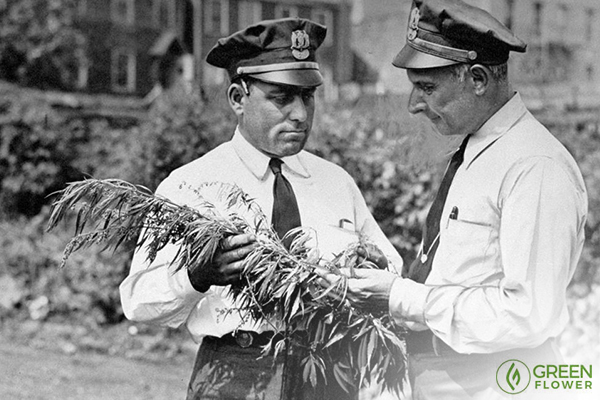 police officers confiscating cannabis