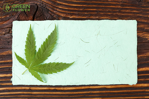 cannabis stem paper