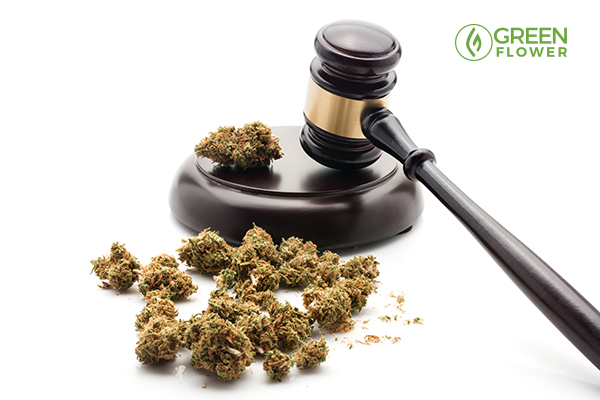 gavel and cannabis