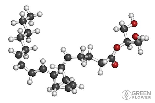 AG-2 molecule