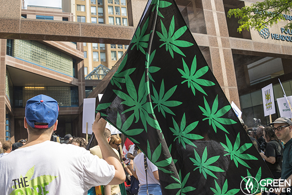 Supporting cannabis