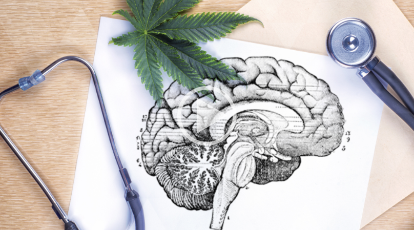 Cannabis for Neurodegenerative Diseases