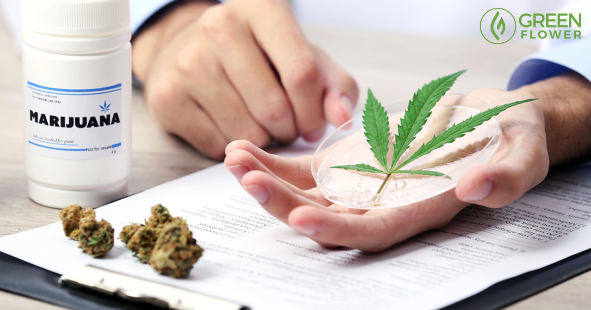 Your Guide to the Top 71 Medical Uses of Cannabis