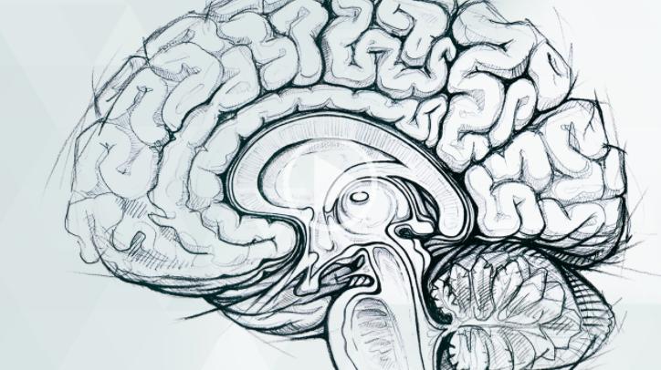 Cannabis and brain health