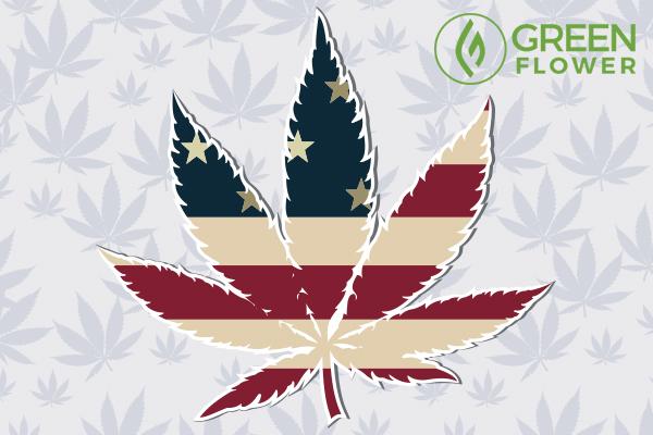 usa flag embed in cannabis leaf