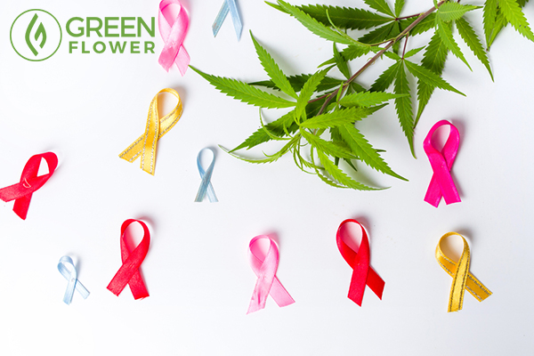 cancer awareness and cannabis