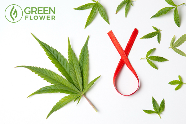 cannabis leafs and cancer awareness symbol