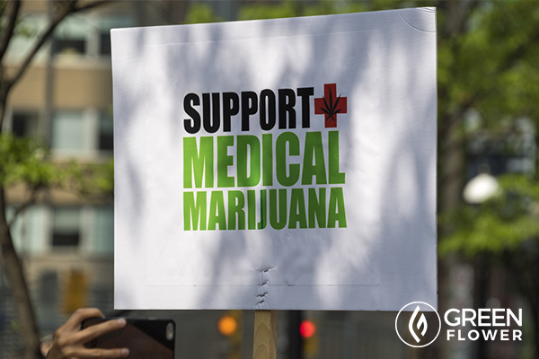 cannabis activists protesting