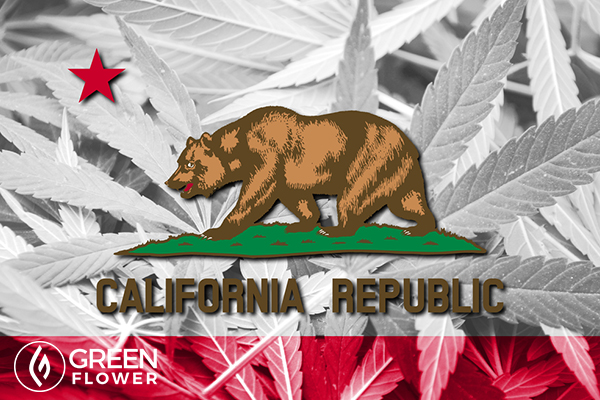 california state flag on cannabis background