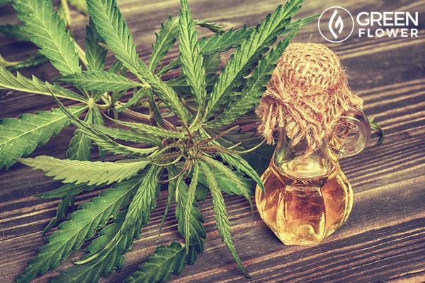 cannabis leaves oil in glass bottle
