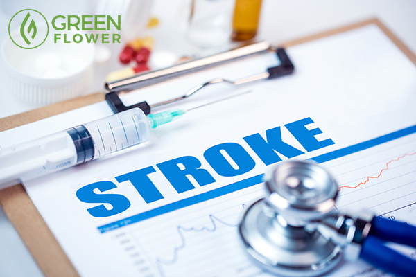 stroke diagnosis report