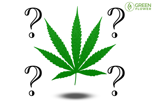 questions around cannabis