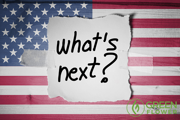 whats next written on american flag