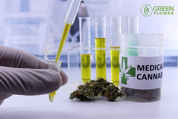 drug test on medical cannabis