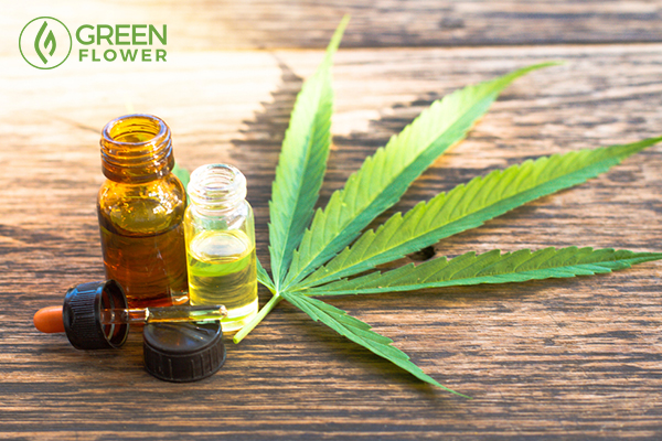cannabis and cannabis extracts oil