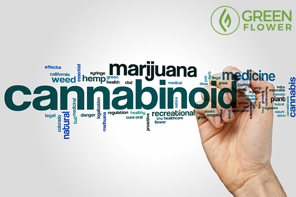 words related with cannabis
