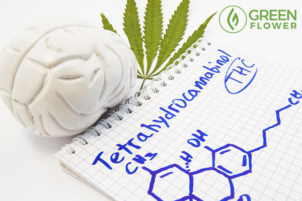 effects of thc on brain