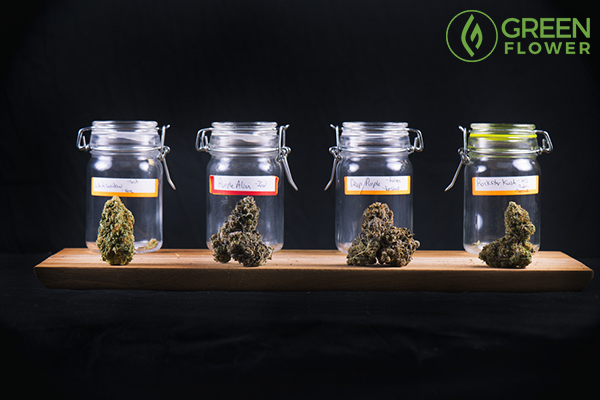selected cannabis strains in bottles