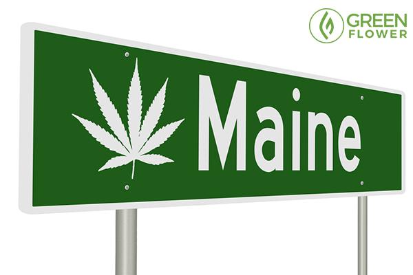 green cannabis maine sign board